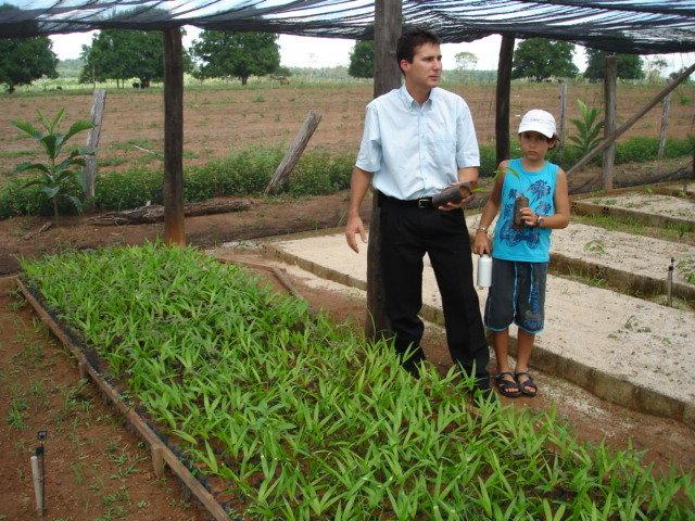 Juizado Especial de Ji-Paraná assegura a doação de 6 mil mudas para arborização urbana - Gente de Opinião