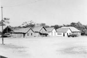 Vila papagaio – Ariquemes Na década de 1960, quando a BR chegou a Ariquemes o lugar era conhecido também como Vila Papagaio, abrigando seringueiros e muitos garimpeiros de cassiterita - Gente de Opinião