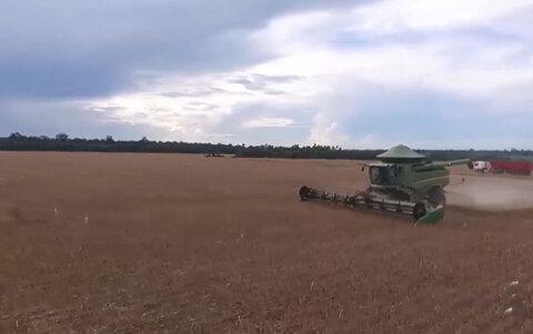 Plano-Safra investe mais de um bilhão de reais no agronegócio de Rondônia