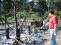 Flor do Amazonas terá proteção emergencial de órgãos federais e estaduais
