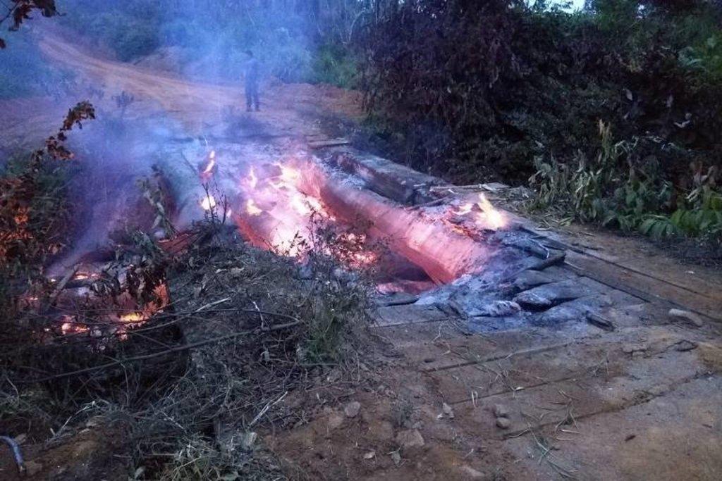 Ibama e ICMBio já sofrem ataques ao conter desmatamento em Rondônia e no Pará - Gente de Opinião