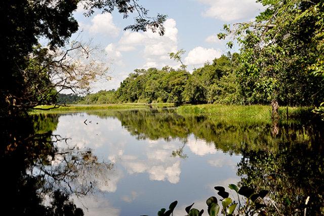 MPF/RO recomenda que órgãos ambientais intensifiquem fiscalizações nas unidades de conservação - Gente de Opinião