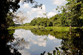 MPF/RO recomenda que órgãos ambientais intensifiquem fiscalizações nas unidades de conservação