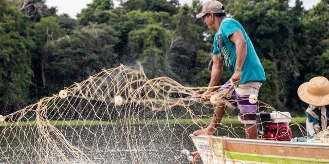Na foto, manejadores na Reserva de Desenvolvimento Sustentável Amanã (Foto Bernardo Oliveira) - Gente de Opinião
