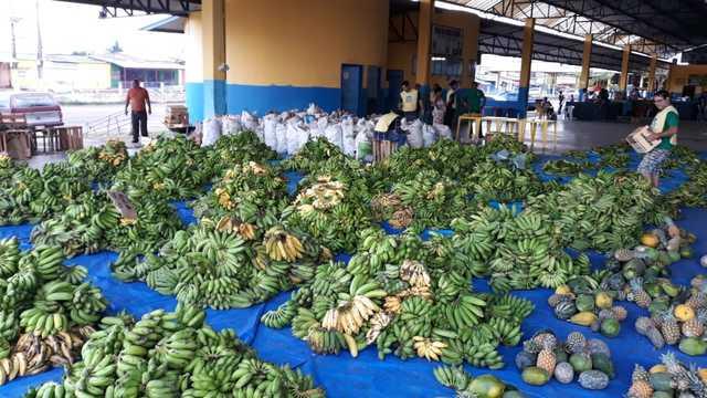 Aquisição de Alimentos distribui mais de 16 toneladas em Porto Velho - Gente de Opinião