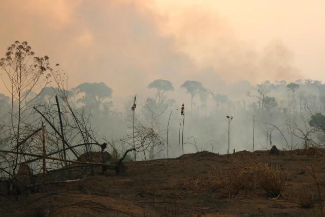 Ações coordenadas de órgãos públicos evita que incêndios atinjam reservas florestais em Machadinho do Oeste  - Gente de Opinião