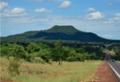 A farsa do complô estrangeiro sobre florestas do Brasil vem dos anos 1950