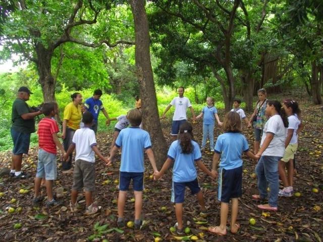 Educar: Solução para Degradação Ambiental e Violência - Gente de Opinião