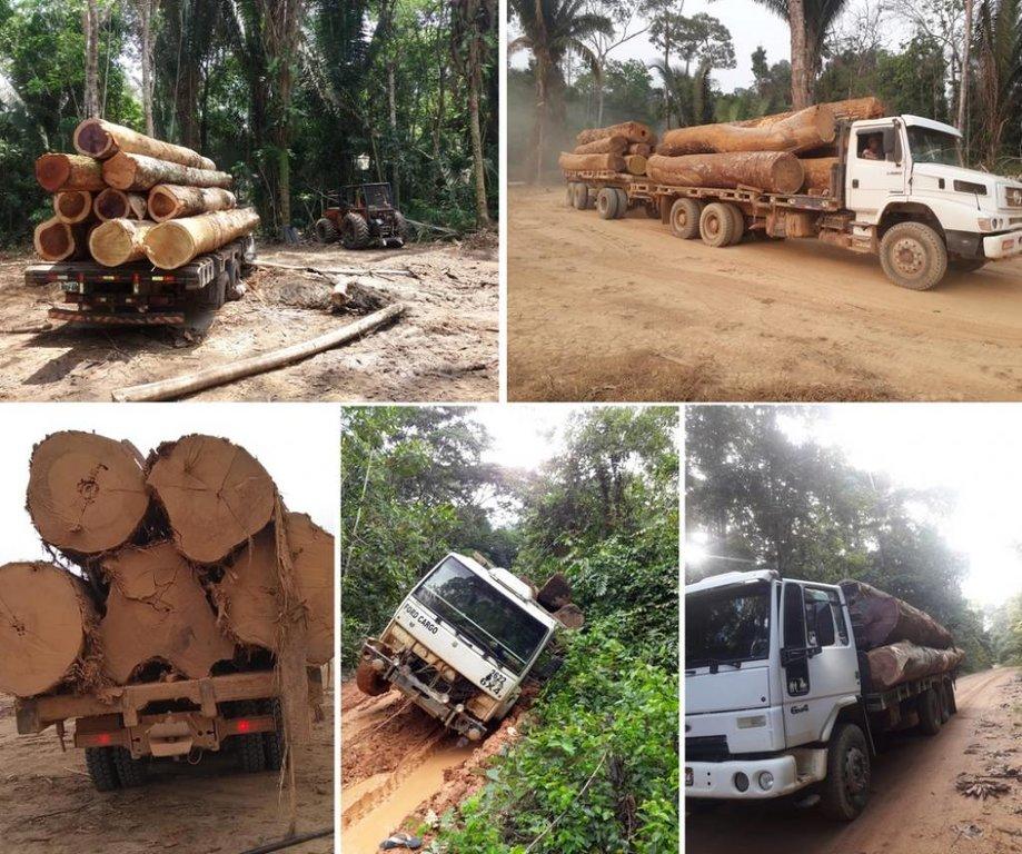 Desmatamento em área de reserva de Rondônia é denunciado pela União dos Proprietários de Imóveis Rurais do Setor Manoa, Gleba Rio Preto e Jaquirana - Gente de Opinião