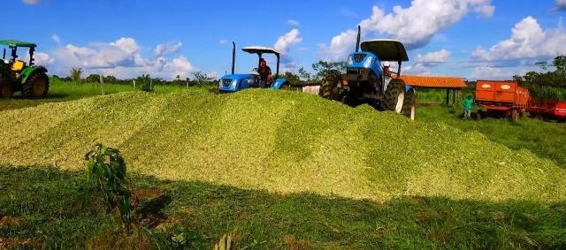 Prefeitura auxilia agricultores na produção da silagem de milho em Castanheiras - Gente de Opinião