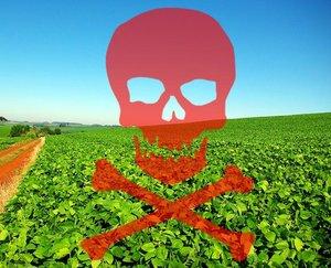 Após acordo com MPF, MP e MPT, fazendeiro vai indenizar famílias por danos de agrotóxicos - Gente de Opinião