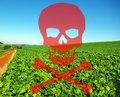 Após acordo com MPF, MP e MPT, fazendeiro vai indenizar famílias por danos de agrotóxicos