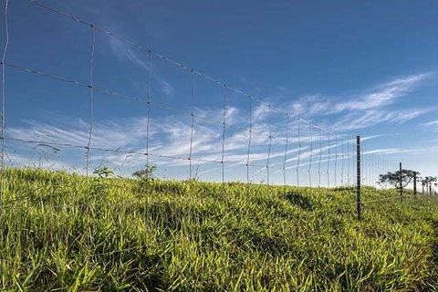 Com foco na tela Campestre, Belgo Arames participa do Dia de Campo Senar Mais Carne (GO)