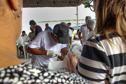 Na Amazônia, Instituto Mamirauá realiza 1º manejo sustentável de jacaré em vida livre do Brasil