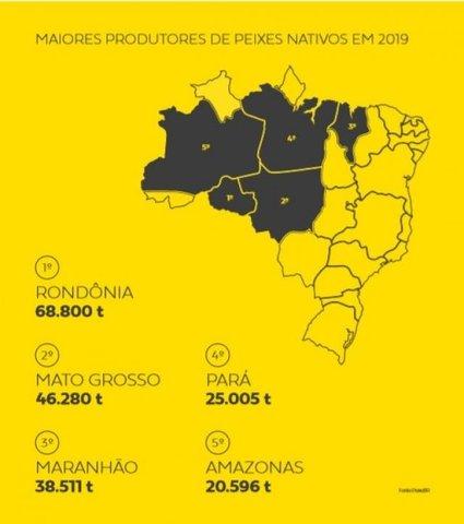 Indicação Geográfica valoriza a produção do tambaqui do Vale do Jamari - Gente de Opinião
