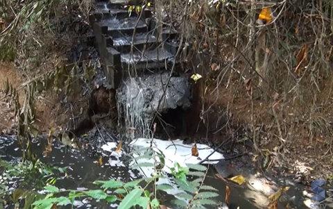 Especialistas falam da atual situação do Igarapé no Cristal da Calama